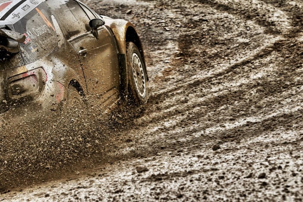 WRC 2015 (3)