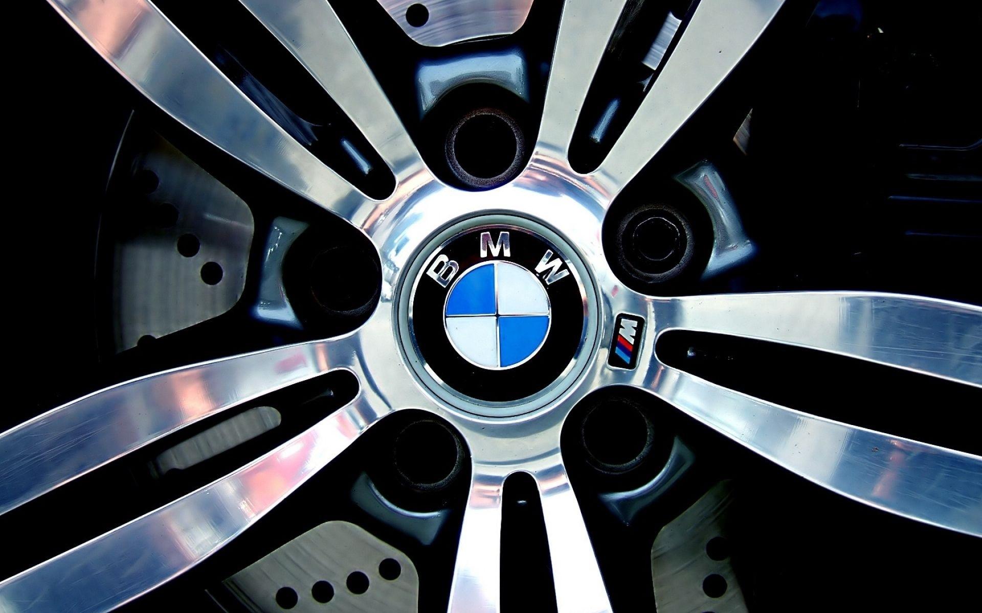 BMW Logo Llanta