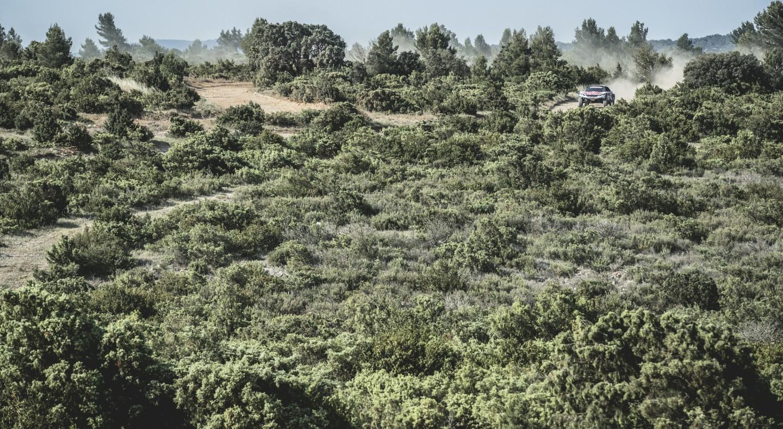 Sebastien Loeb Pikes Peak Peugeot Peugeot 208 Unlimited Sebastien Loeb Pikes Peak Photo 4