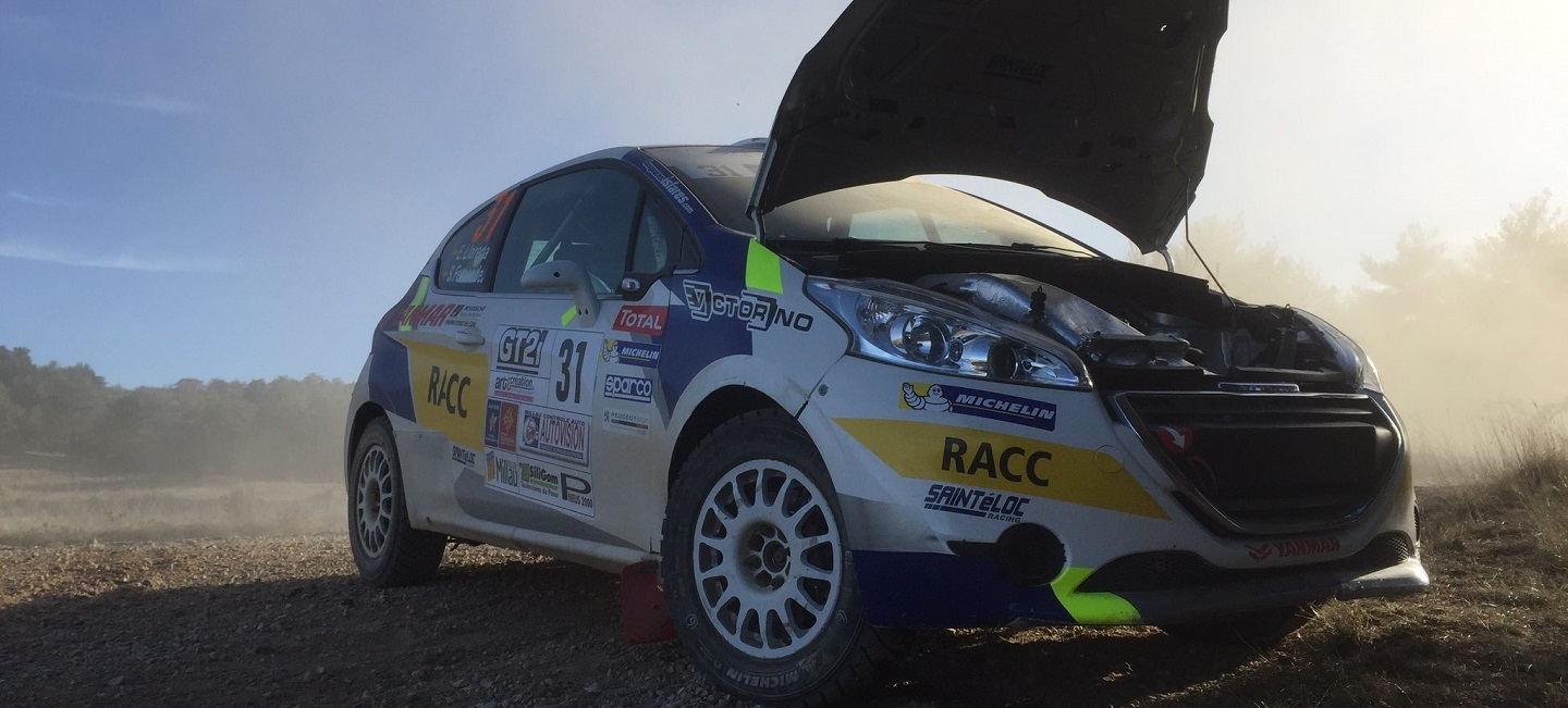 peugeot-208-rally-cup-cardabanes-2017 (2)