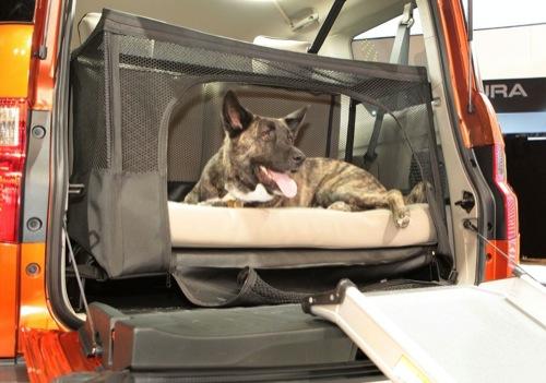 Honda Element Concept Dog Friendly