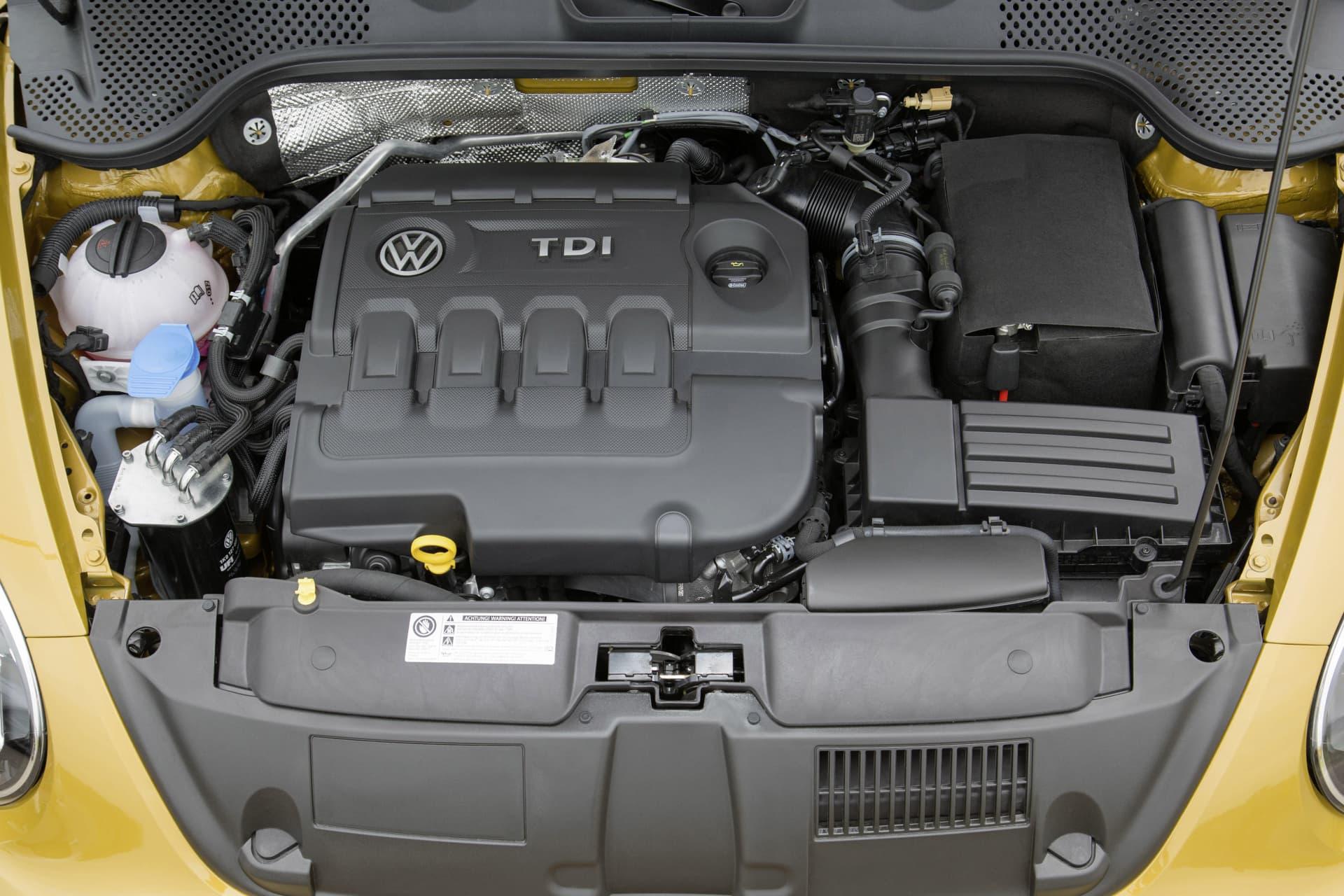 Volkswagen Beetle Beetle Dune 11