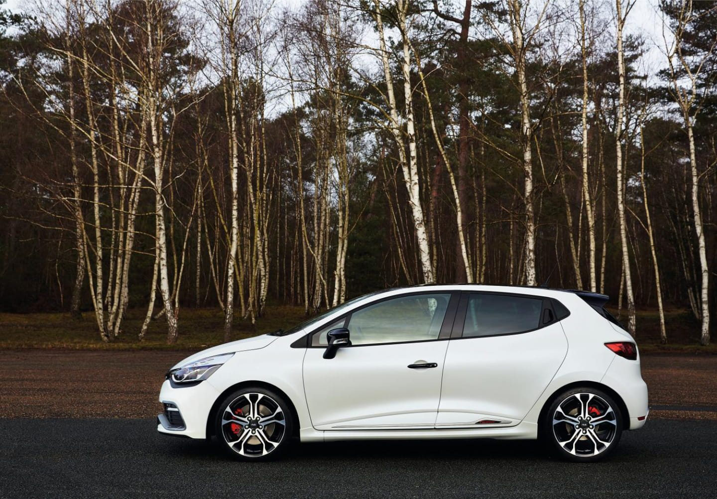 Renault_Clio_RS_220_Trophy_EDC_2015_DM_3