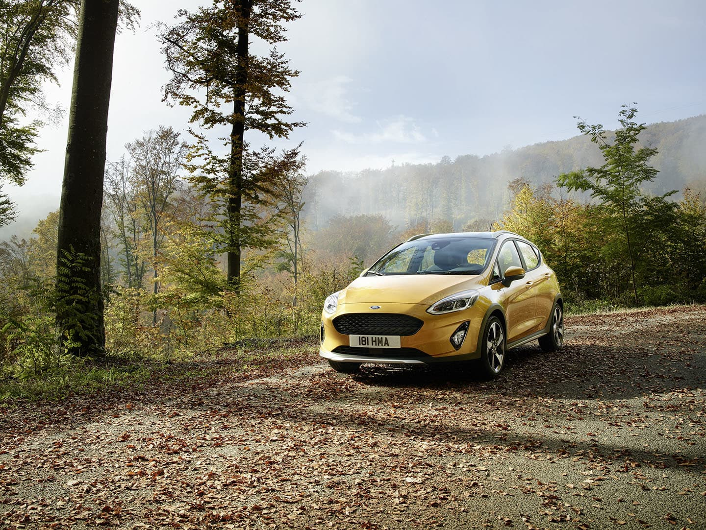 Ford Fiesta Active 2018 07