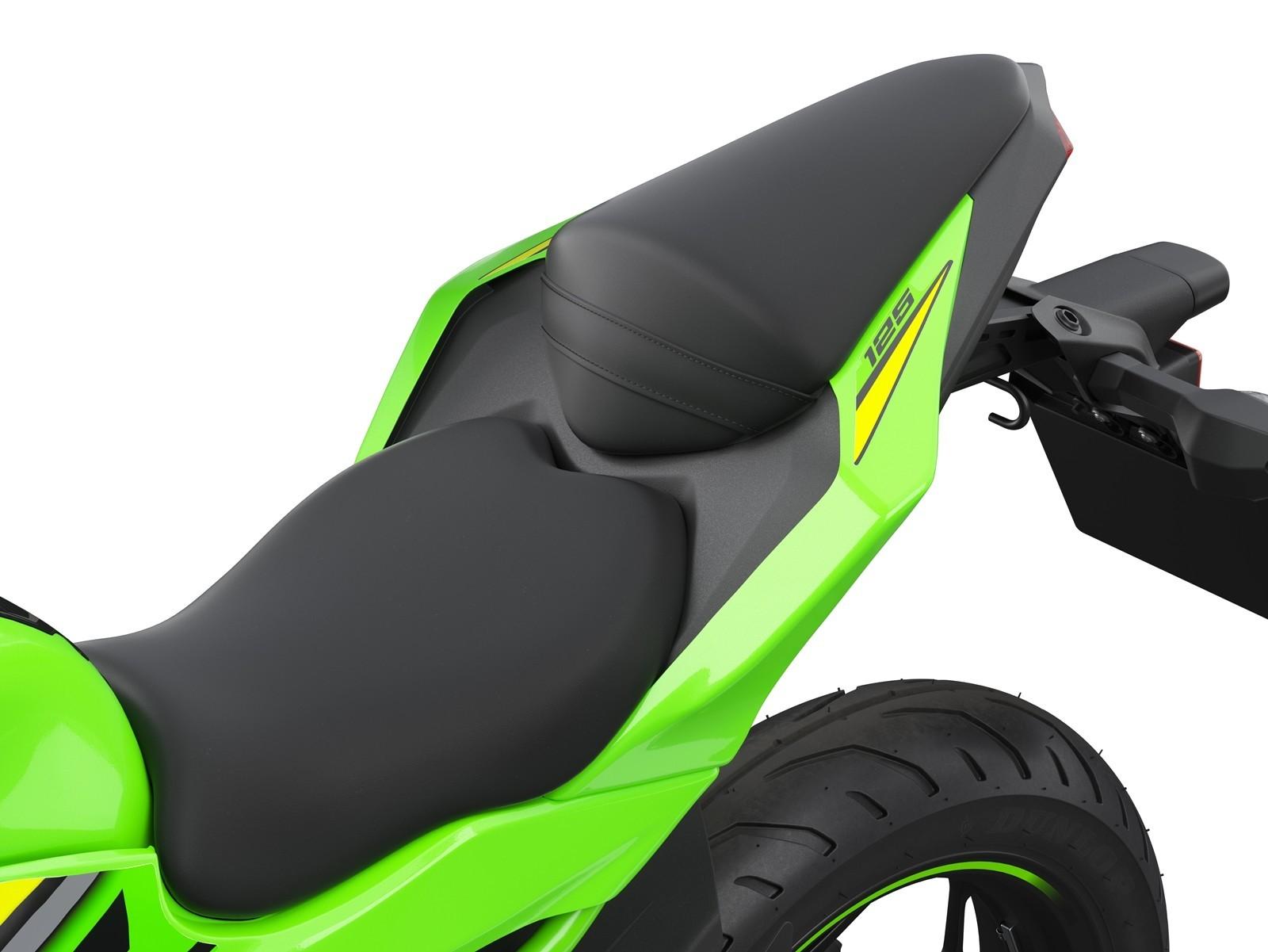 Kawasaki Ninja 125 Dm 10