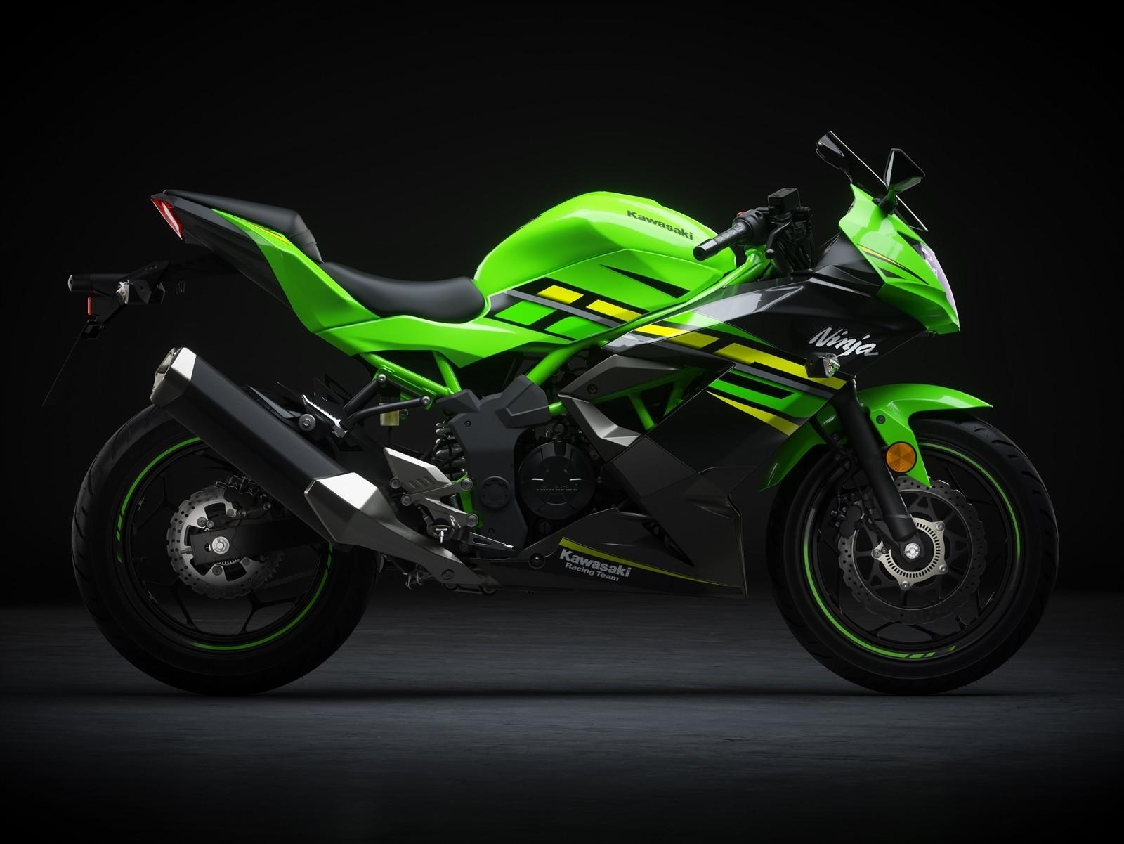 Kawasaki Ninja 125 Dm 6