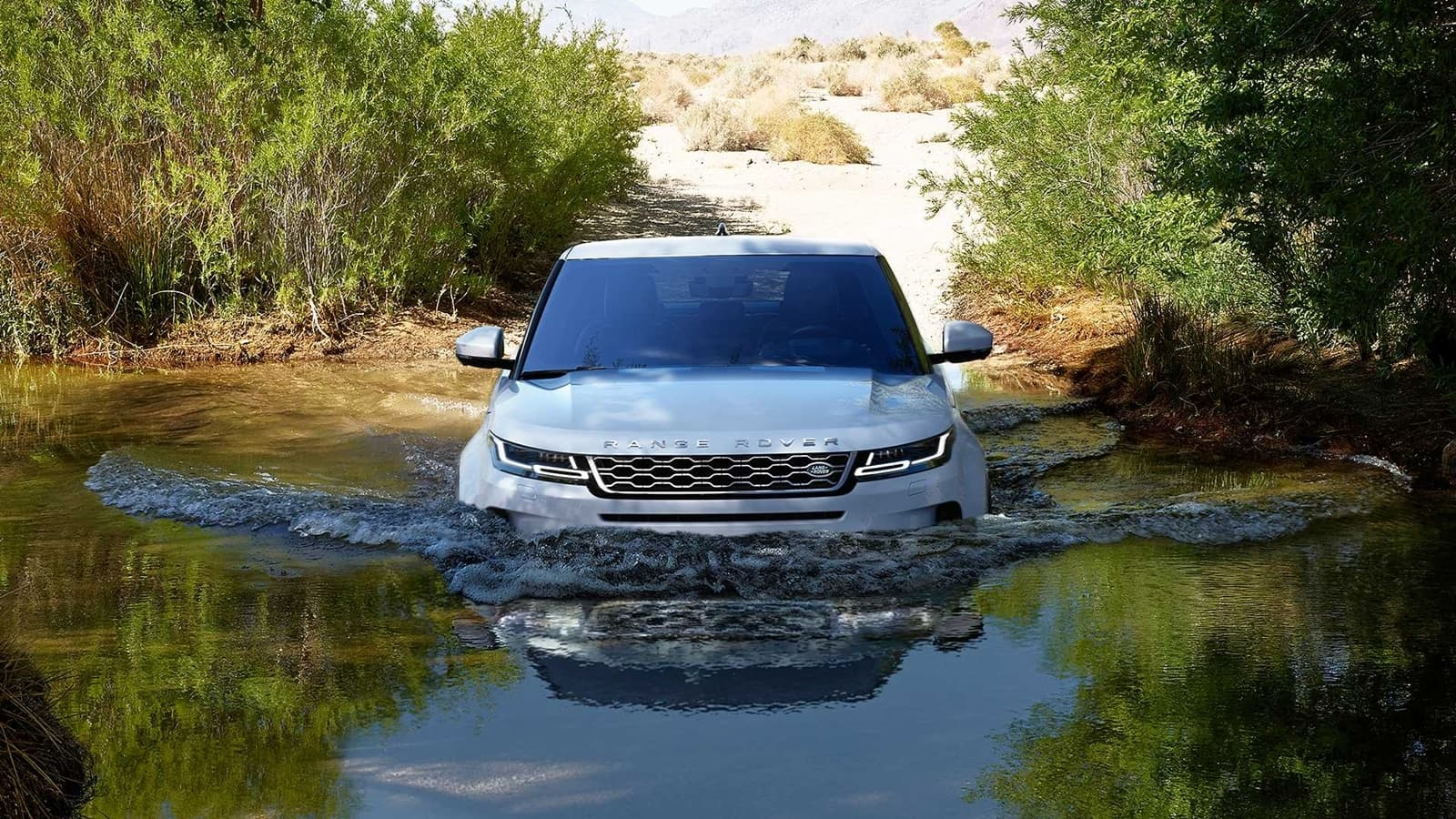 Range Rover Evoque 2019 1118 016