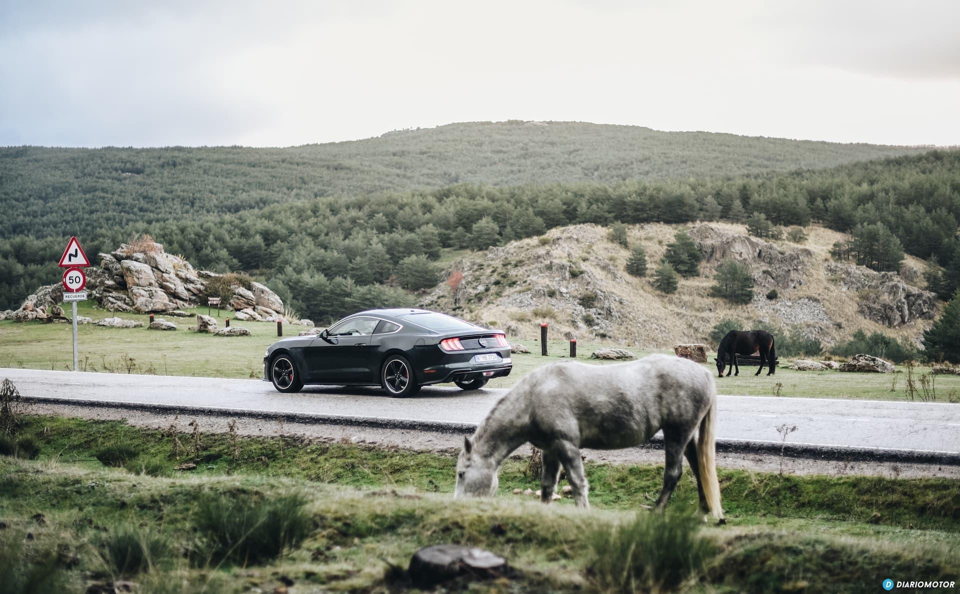 Ford Mustang Bullit Prueba Ford Mustang  12