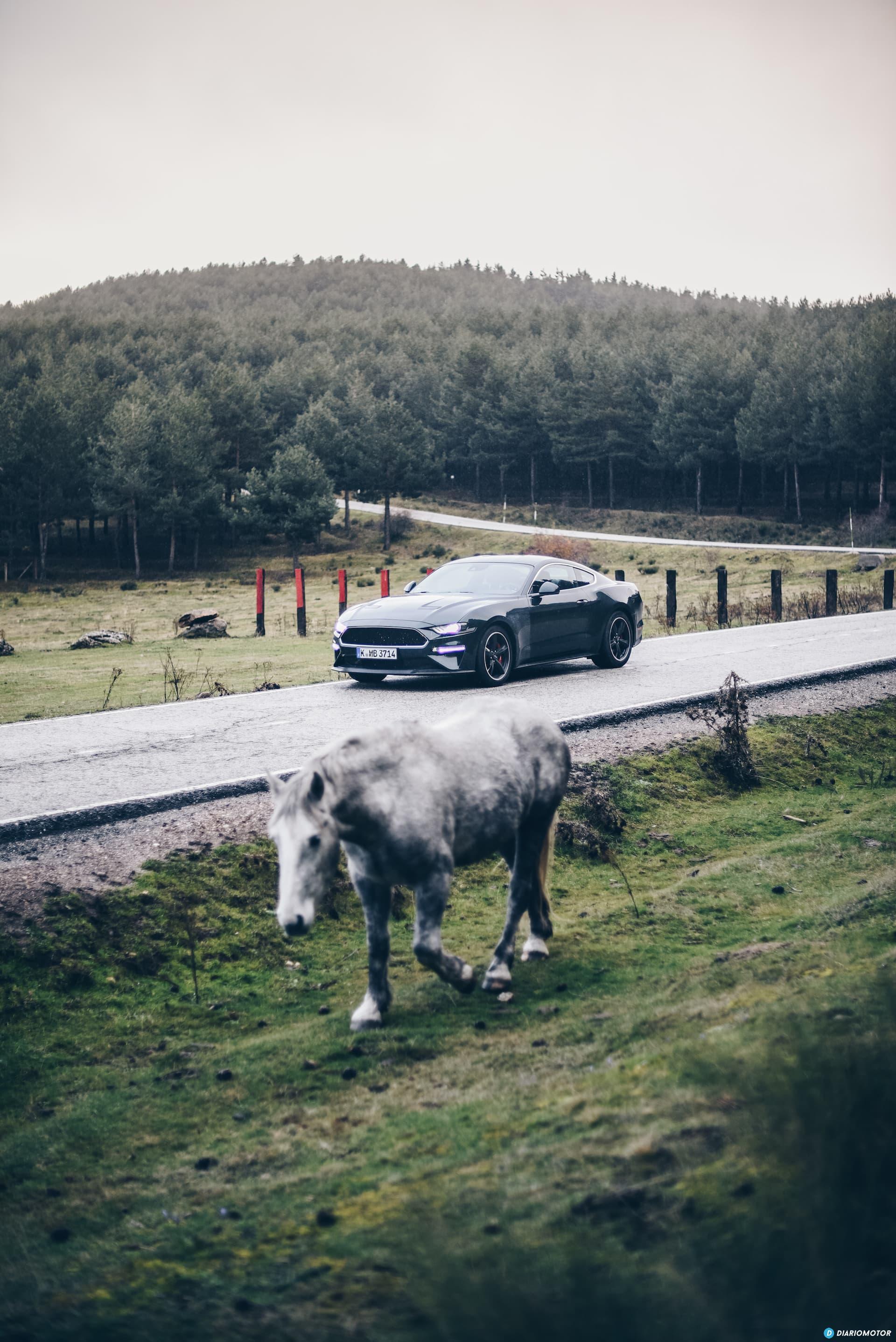 Ford Mustang Bullit Prueba Ford Mustang  15