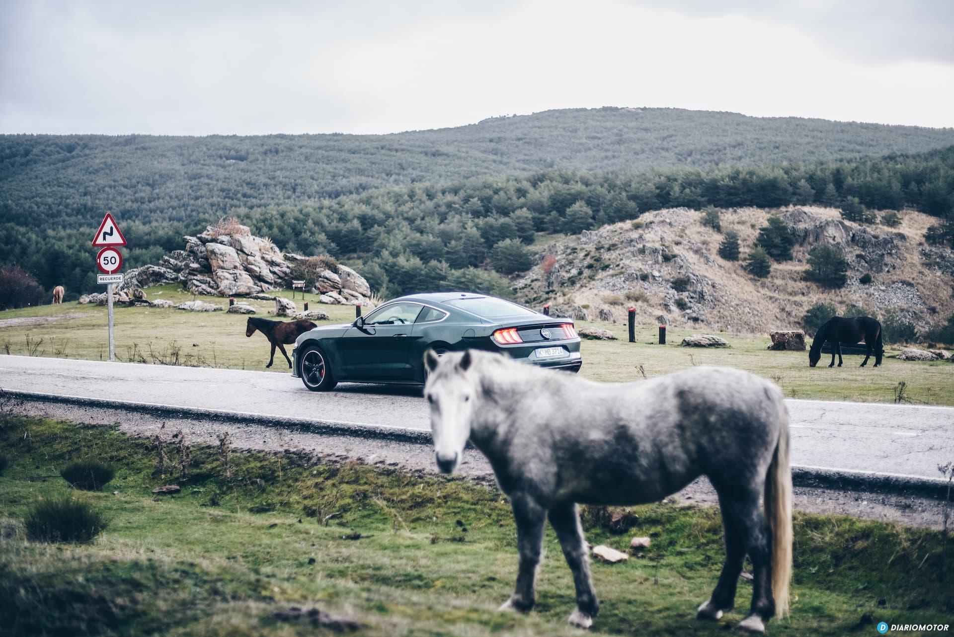Ford Mustang Bullit Prueba Ford Mustang  16