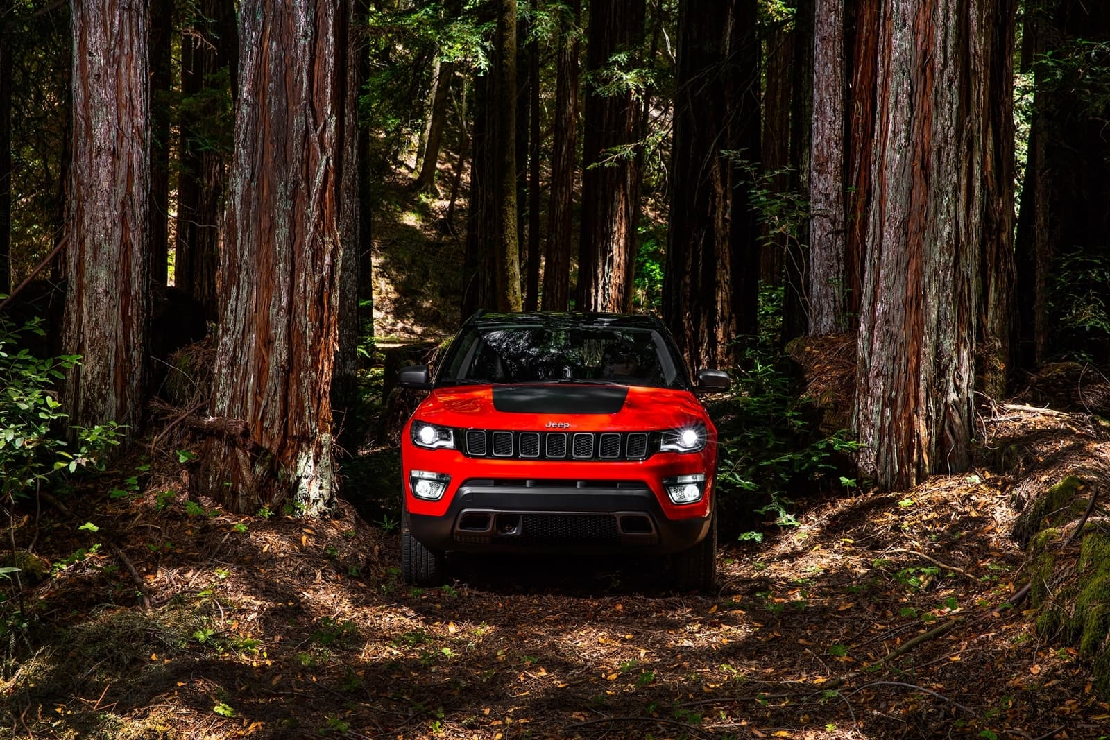 Jeep Compass Trailhawk 0119 021