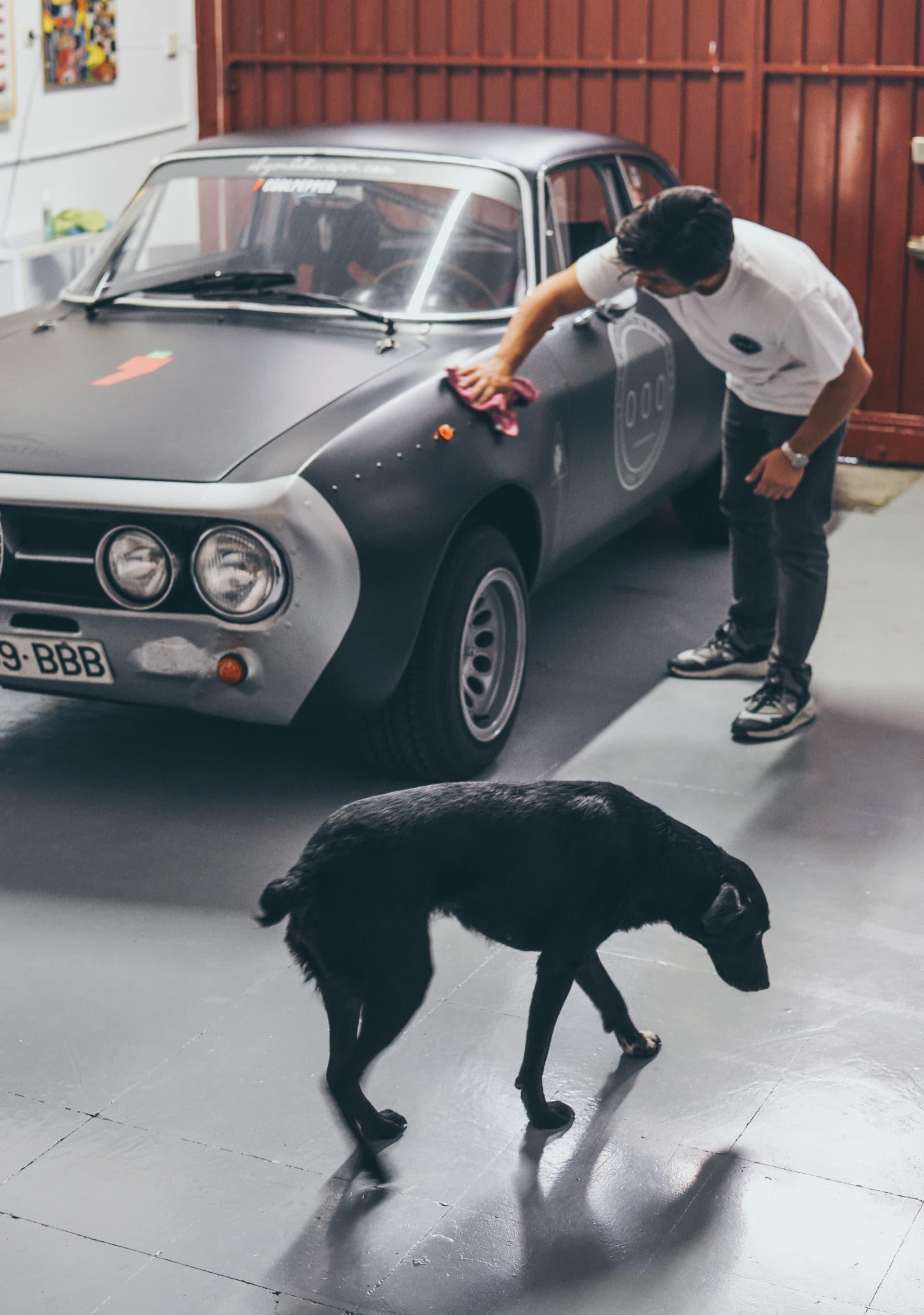 Video Alfa Romeo Hector Coche Clasico Dm Alfa Hec 10