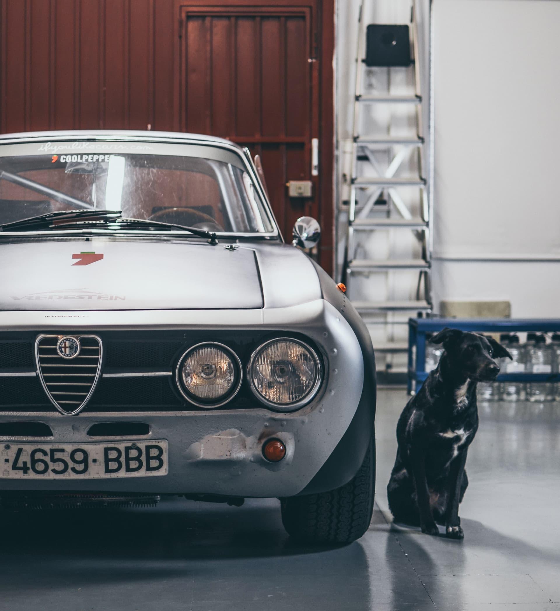 Video Alfa Romeo Hector Coche Clasico Dm Alfa Hec 12