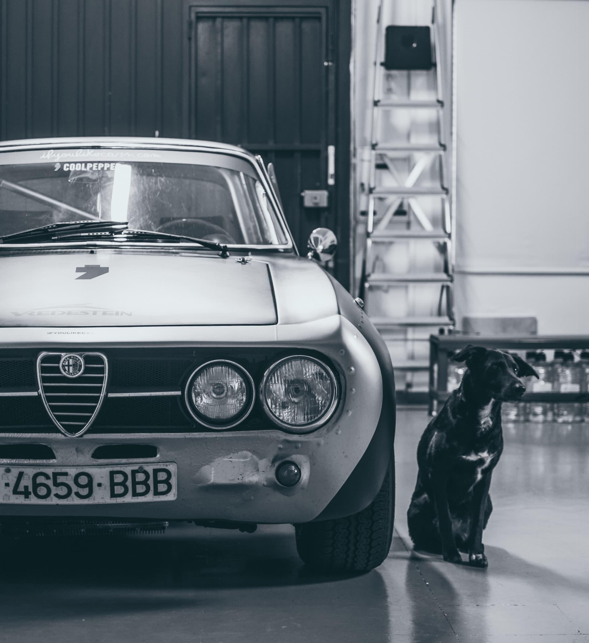 Video Alfa Romeo Hector Coche Clasico Dm Alfa Hec 22