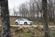 Peugeot E 208 Coche Compartido 03 thumbnail