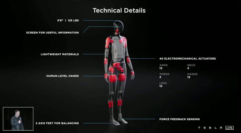 Tesla Bot  04