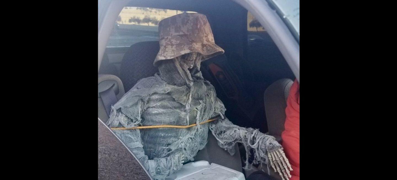 Esqueleto Bus Vao