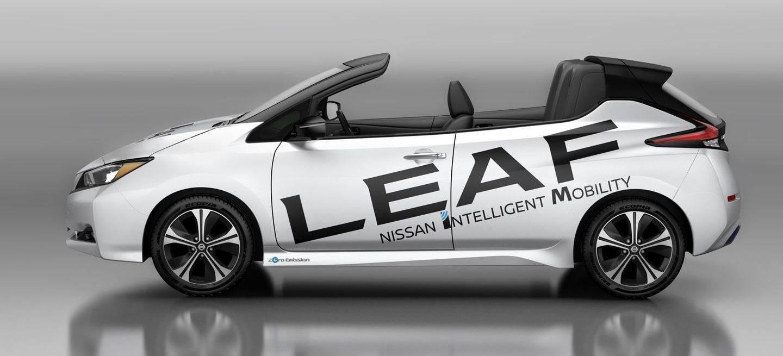 Nissan Leaf Open Air P