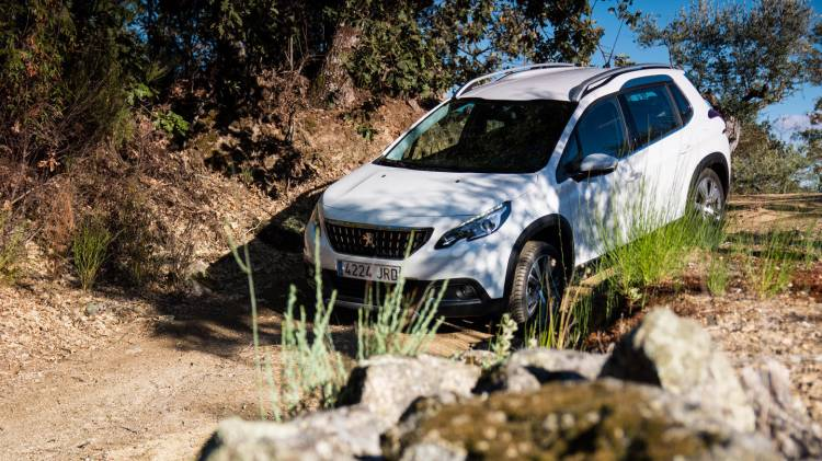 peugeot_2008_roadtrip_dm_6