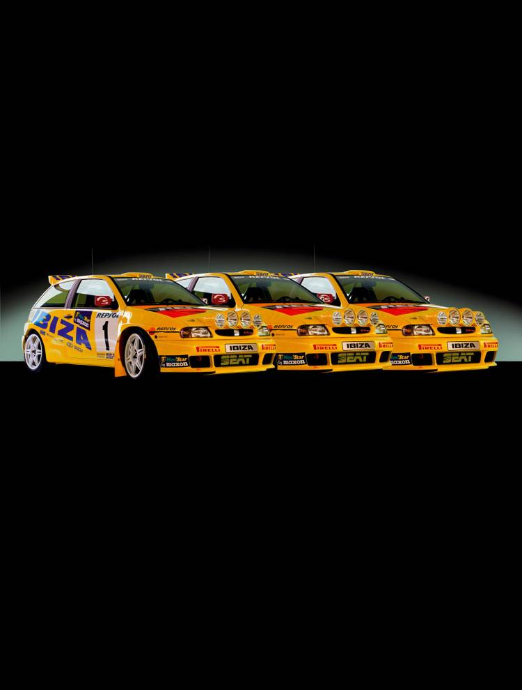 seat-ibiza-kit-car-wrc