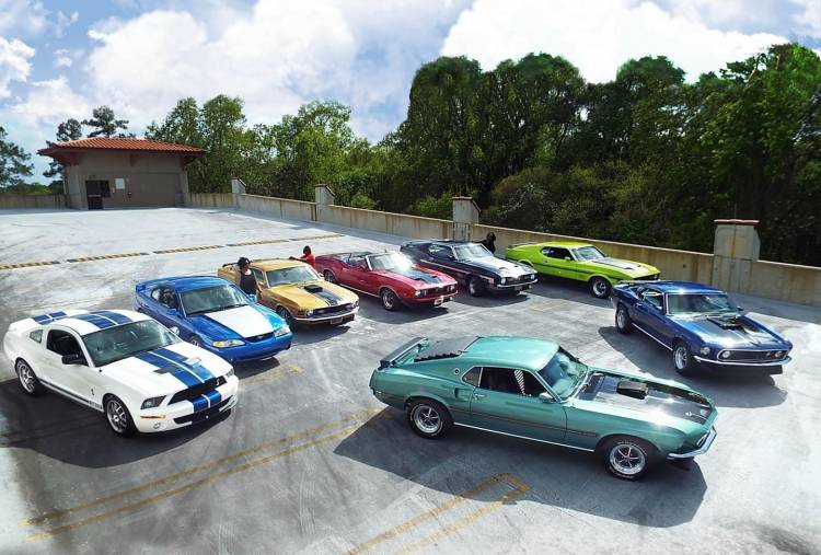 Speed-Family-Mustangs