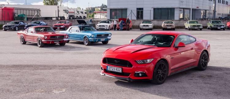 Cabalgada Mustangs P