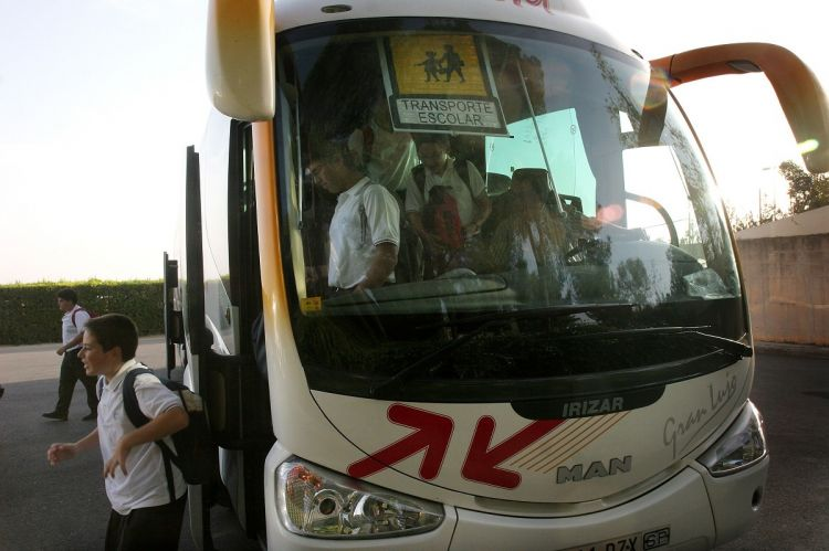 Cinturon Seguridad Autobus Transporte Escolar