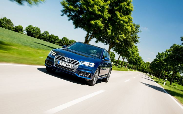Conducir Con Viento Arboles Audi