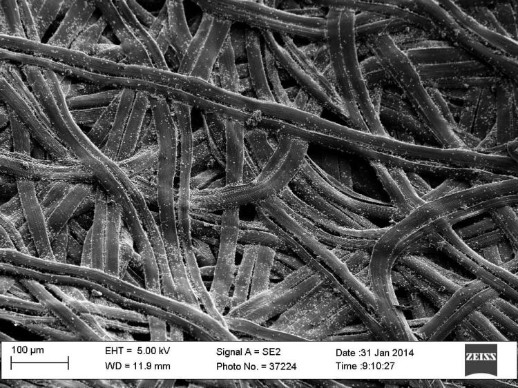 Fibra De Carbono Coche Microscopio