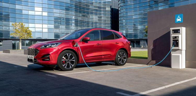 Ford Kuga Rojo St Line 2019 02