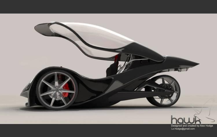 Hodge Hawk Concept