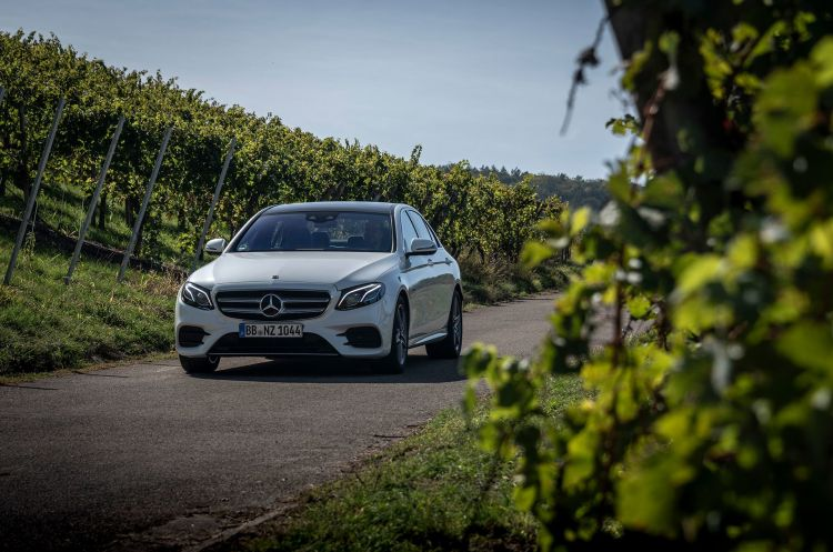 Mercedes E 300 De Diesel Enchufable 2019 15