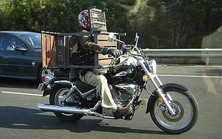 Motorista con parrilla
