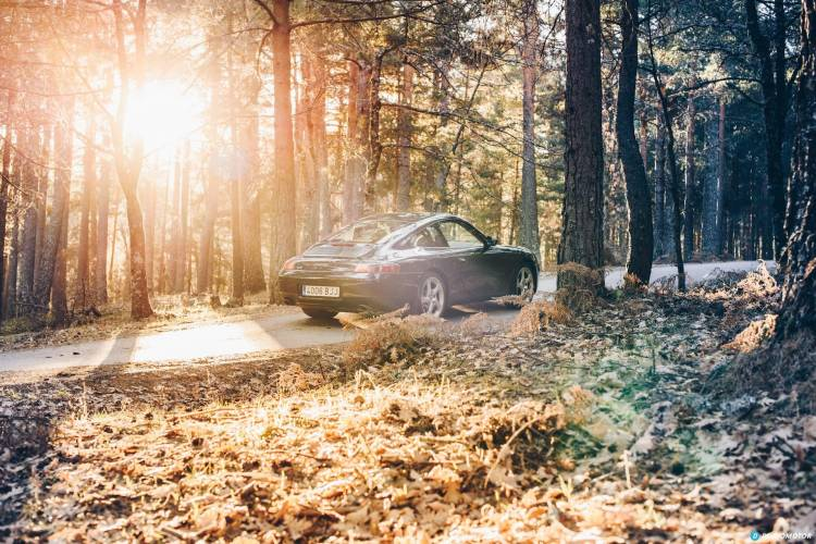 Porsche 911 996 Amanecer Porsche 911 26