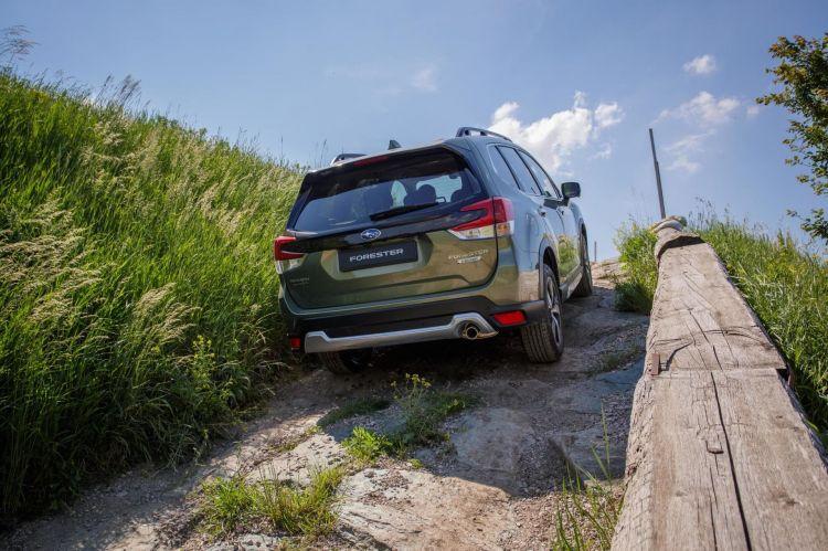 Subaru Forester Hibrido Dm 4
