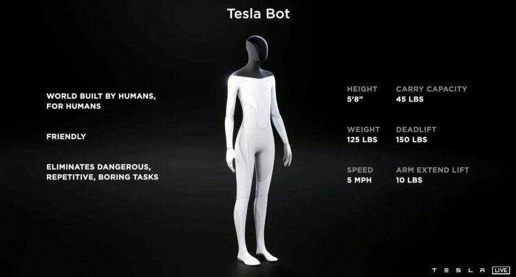 Tesla Bot  03