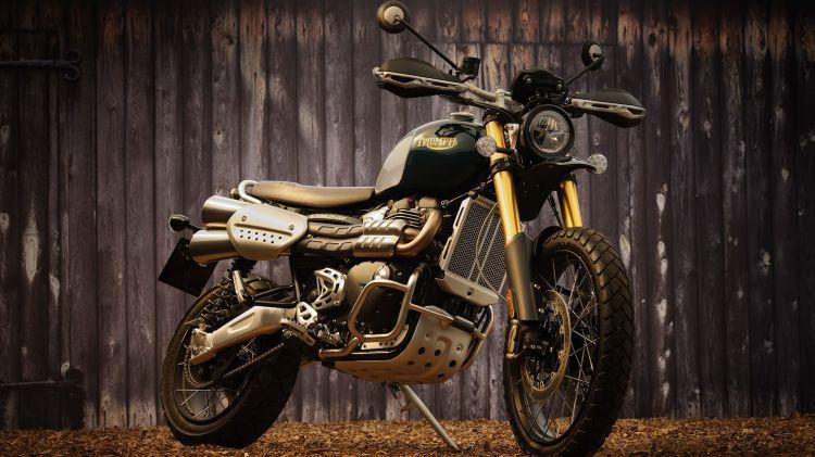 Triumph Scrambler Steve Mcqueen 1200 03