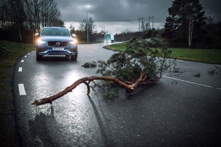 Volvo Seguridad Animales