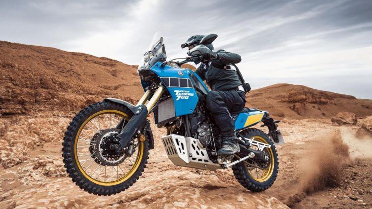 Yamaha Tenere Rally Edition Dm 11