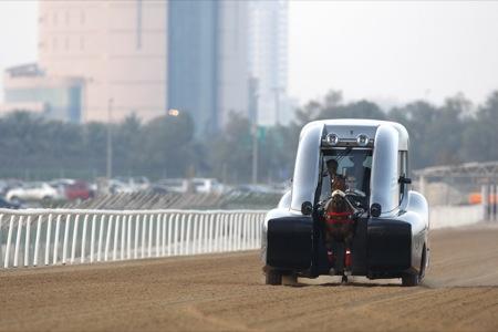 Roush y su vehículo de entrenamiento de caballos, curioso al menos