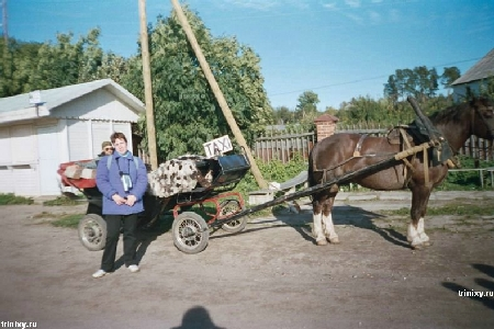 La diversidad de los taxis rusos