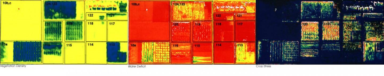 Imagen de Daedelus, de la NASA (año 2001)