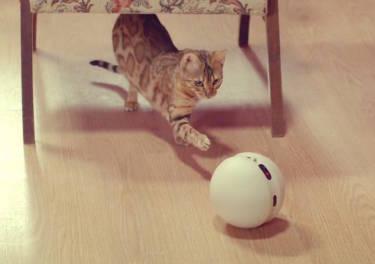¡Tócate las pelotas!